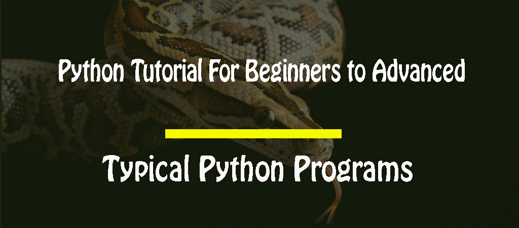 Python Tutorial For Beginners to Advanced – Typical Python Programs