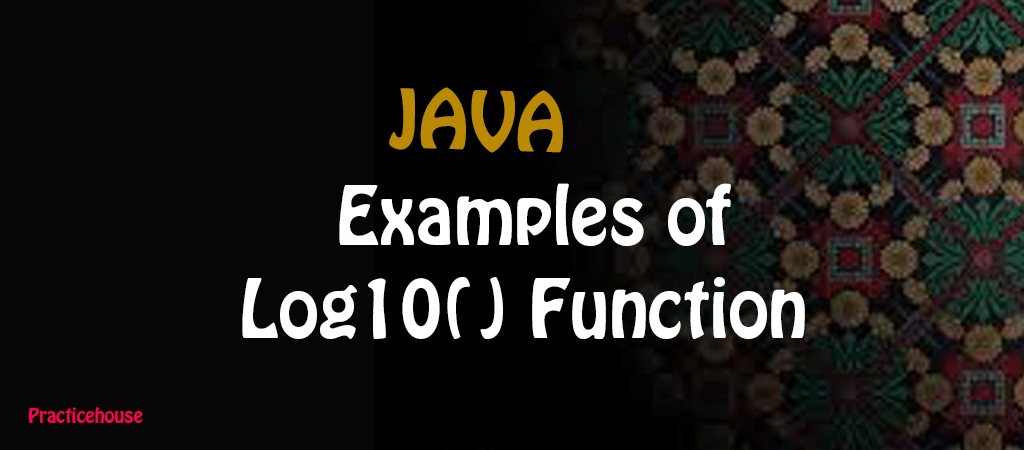 Java Example Programs –  Base 10 Logarithm Value